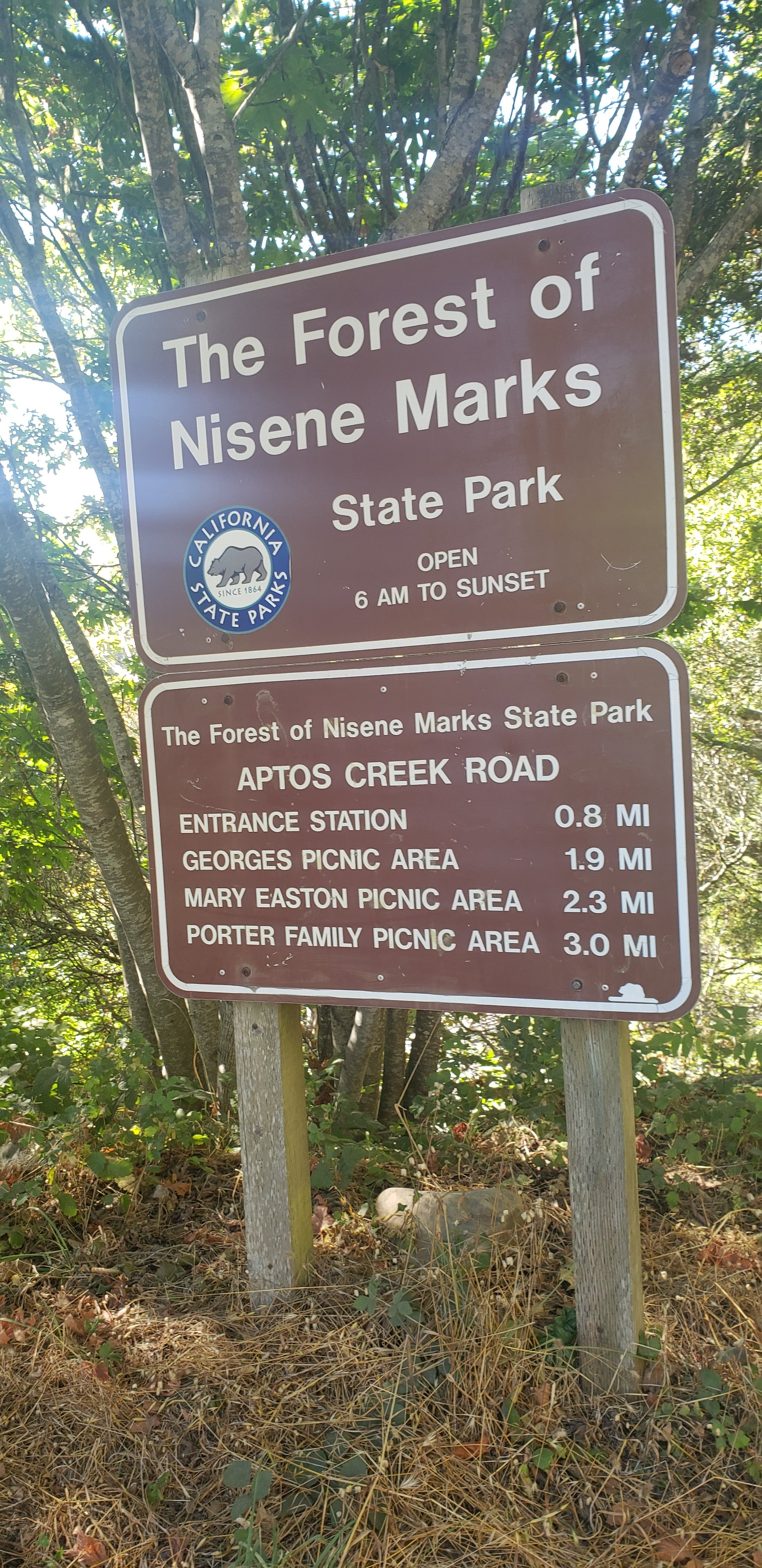 FOREST OF NISENE MARKS STATE PARK, Aptos, CA